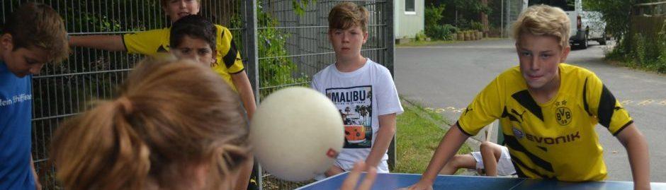 Headis Tischtennis Platte