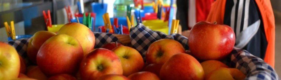 Bei der Frage Was ist Gesundheit spielt die Ernährung eine große Rolle. Äpfel sind gesund.